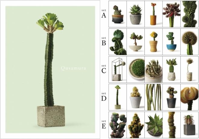 叢 - Qusamura 展 〜蠢く植物の世界〜 | PARCO MUSEUM | パルコアート.com